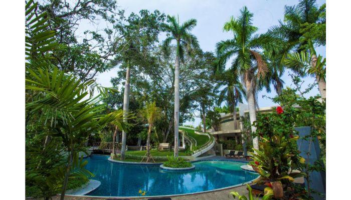 Inspirasi Kolam Renang Minimalis Konsep Tropis