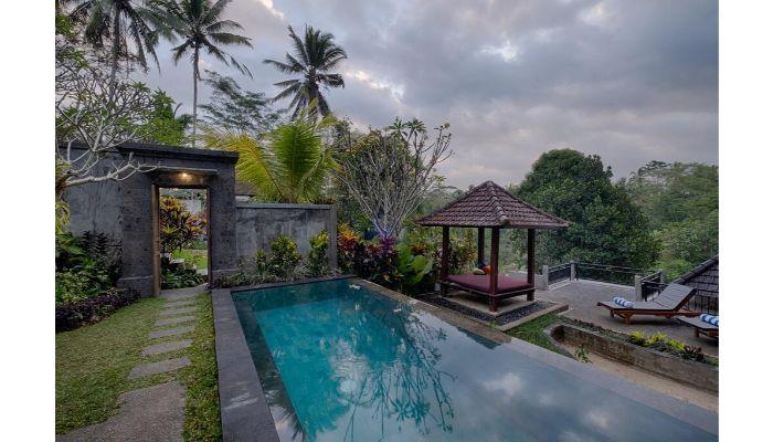 desain kolam renang tropis